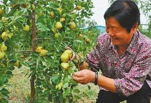 济阳县农特产展销中心正式开业